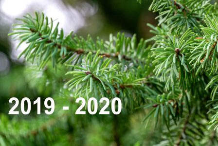 Forest Planning and Projection System (FPS) Versions: 2019 – 2020